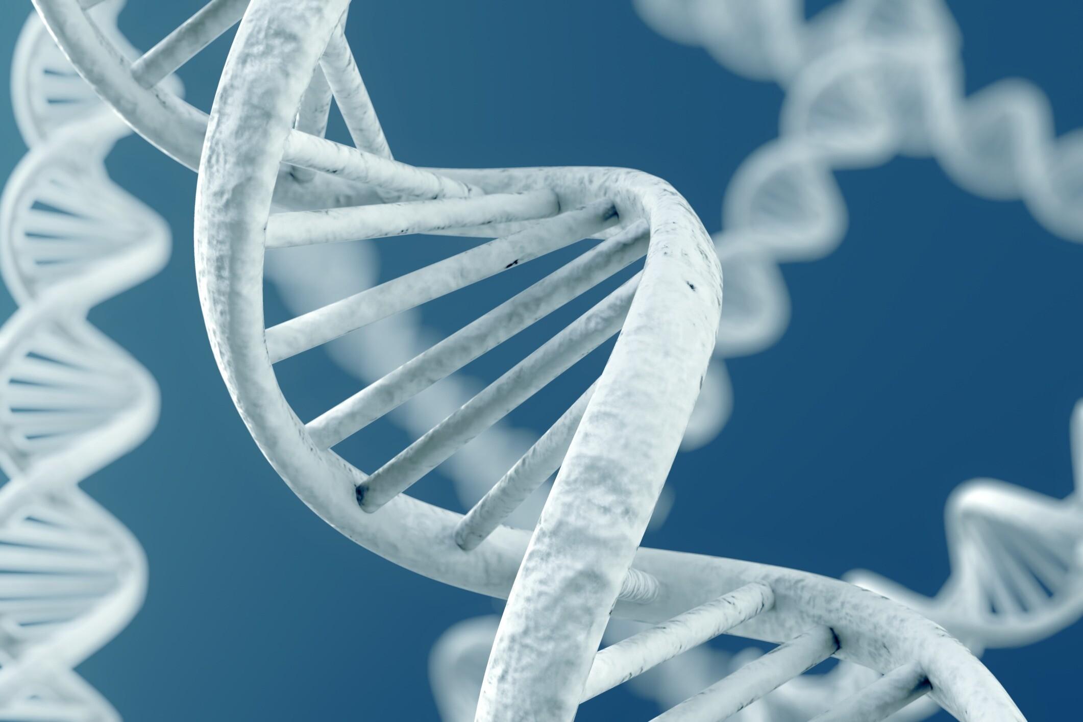 MH genetic analysis