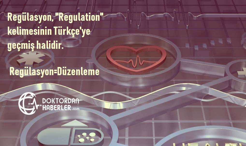regulasyon nedir tıp