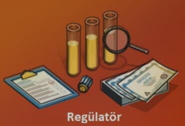 regulator ne demek
