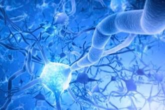 noroloji bolumu hangi hastaliklara bakar