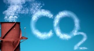 kandaki karbondioksit miktarı artarsa ne olur