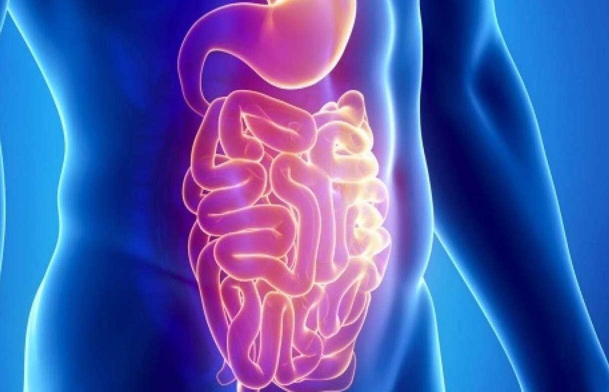akut gastroenterit recetesi