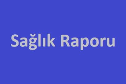 sağlık raporu