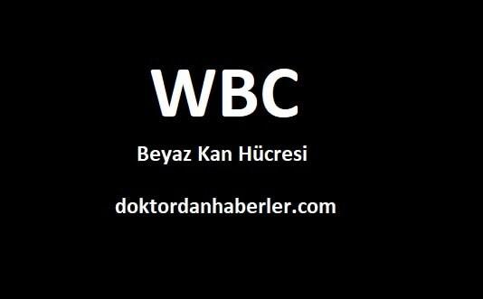 WBC Nedir?